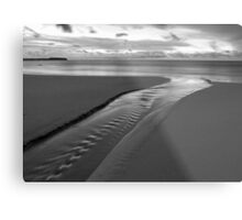 Stream of Silver Metal Print