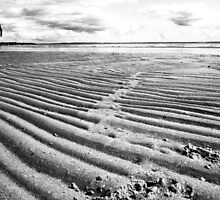 Lonely Beach (near geelong) by Andrew (ark photograhy art)