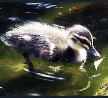 spring fluff II by vampvamp