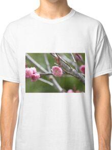 Cherry Blossoms Classic T-Shirt