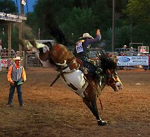 State Finals Rodeo Bronc Riding 2 by Carl M. Moore