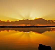 Gold Dawn - Narrabeen  by kathrynsview