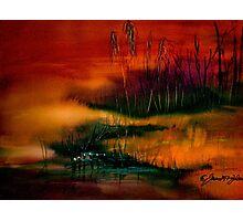 A Sudden Softness.. Photographic Print