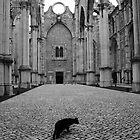 O gato preto by Giulio Bernardi