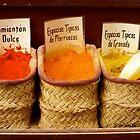 Spices by Giulio Bernardi