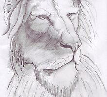 Lion Sketch by pip85