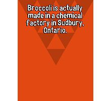 Broccoli is actually made in a chemical factory in Sudbury' Ontario. Photographic Print