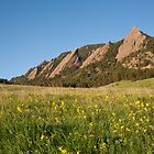 Flatirons in the spring by Teresa Smith