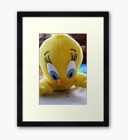 Whadda ya mean, do I tweet?!?!? Framed Print