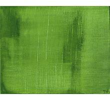 Cut Grass Photographic Print