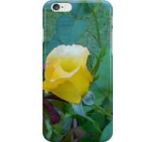 Baby Rose of Texas iPhone Case/Skin