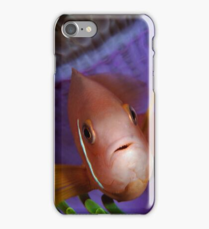 Anemone Fish in Anemone iPhone Case/Skin