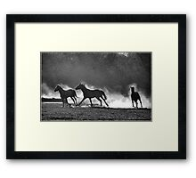 HORSE SILHOUETTES IN BLACK AND WHITE Framed Print