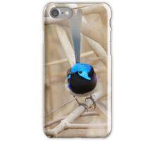 Vibrant iPhone Case/Skin