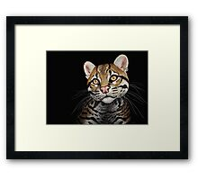 Billy 2 Framed Print