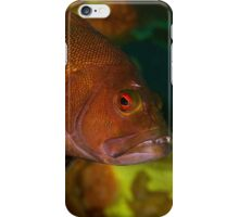 Breaksea Cod Portrait iPhone Case/Skin