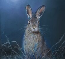 Hare in moonlight by Dave Ettridge