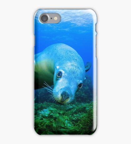 Playful Sealion iPhone Case/Skin