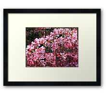Colors of Summer - collage Framed Print