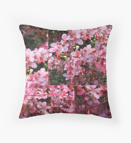 Colors of Summer - collage Throw Pillow