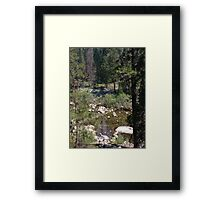 Stream in Yosemite Framed Print