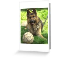 german shepherd dog.. Greeting Card