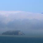 Alcatraz Island, San Francisco Bay by Laurie Puglia