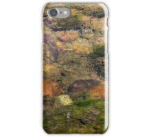 Renfrew Ravine - vibrant earth-tone stones iPhone Case/Skin