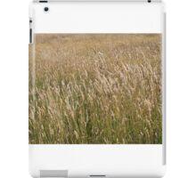 Sun bleached long grass iPad Case/Skin