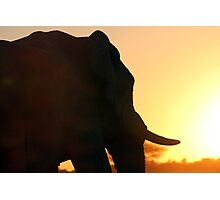Silhouette of a Colossus Photographic Print