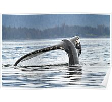 Whale #1638--Broken But It Still Works Poster