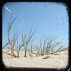 Grassy Dunes - TTV #1 by Kitsmumma