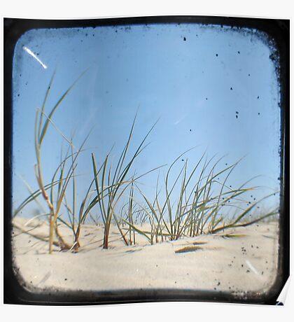 Grassy Dunes - TTV #1 Poster