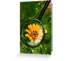 Getting close to nature Greeting Card