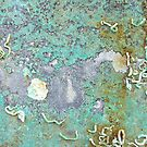 Crystalline Lagoon  by Gina Ruttle  (Whalegeek)