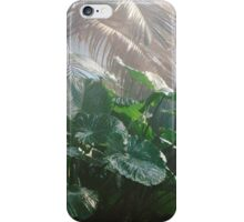 Philodendrons in the Tropical Dome iPhone Case/Skin