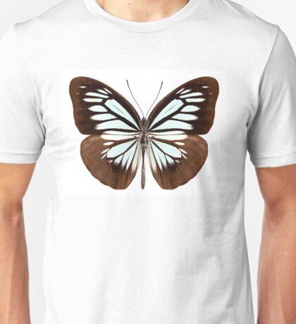 Butterfly species pareronia boebera boebera Unisex T-Shirt