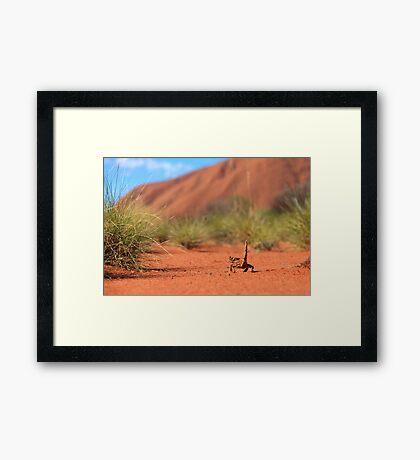 Follow me to Ayers Rock Framed Print