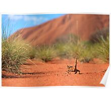 Follow me to Ayers Rock Poster