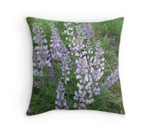 Tailcup Lupine Throw Pillow