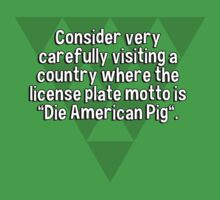 "Consider very carefully visiting a country where the license plate motto is ""Die American Pig"". T-Shirt"