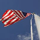 At the Top of the Flag Pole by Buckwhite