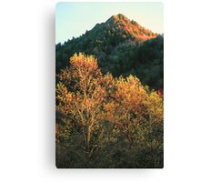 SPRING EVENING,THE CHIMNEY TOPS Canvas Print