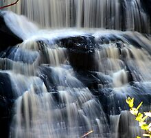 winter. agnes falls, victoria by tim buckley | bodhiimages