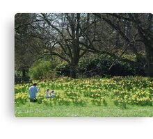 a family in the daffodils Canvas Print