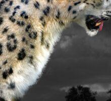 snow leopard Sticker