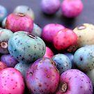 Porceline Candy by Carla Wick/Jandelle Petters