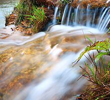 falls in miniature by Matt  Williams