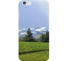 The Green Green Grass of Winter iPhone Case/Skin