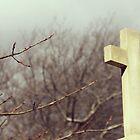 The Cross  by Luke Crozier